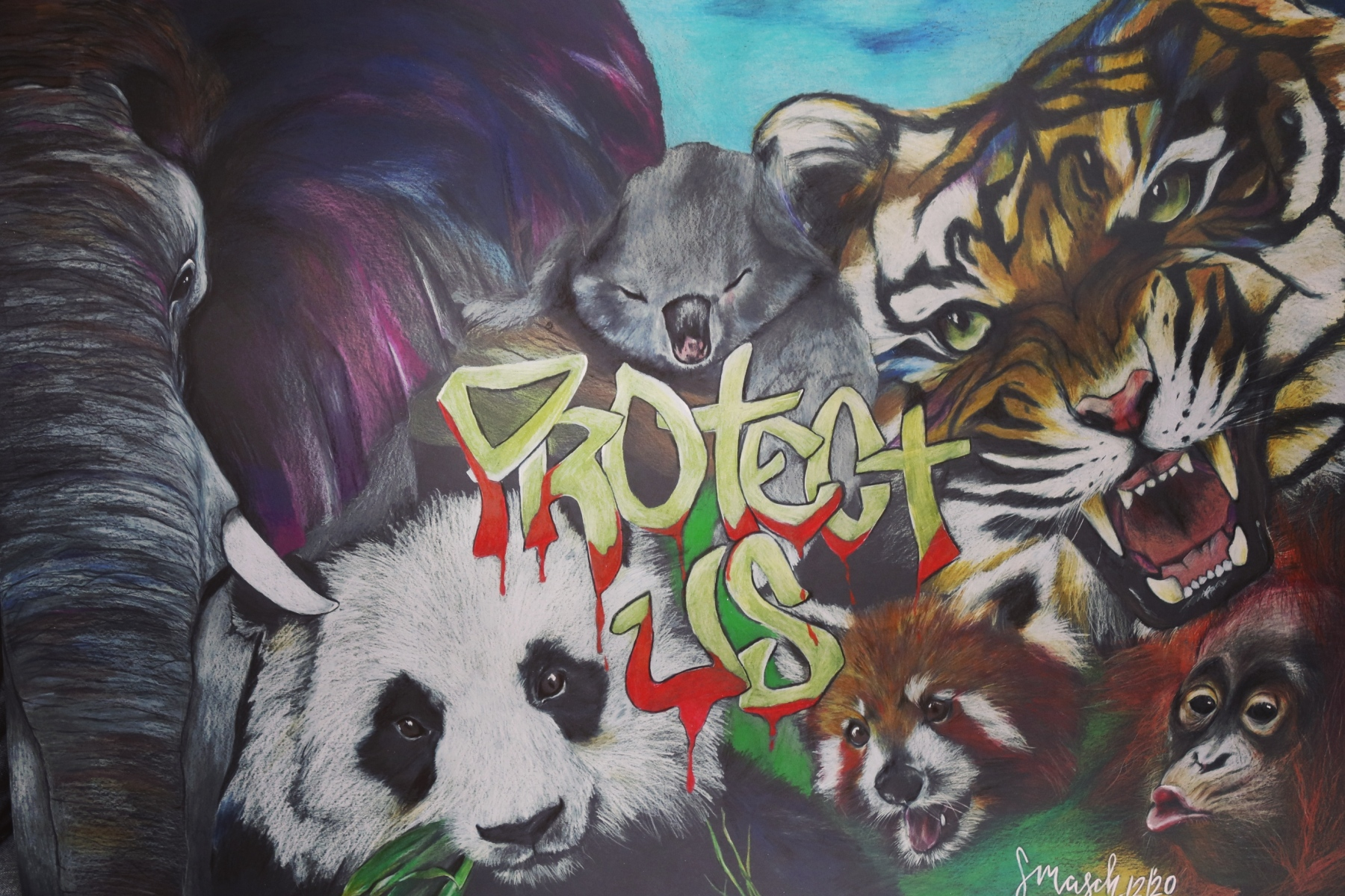 Polychromos-70x100-Right-to-live-